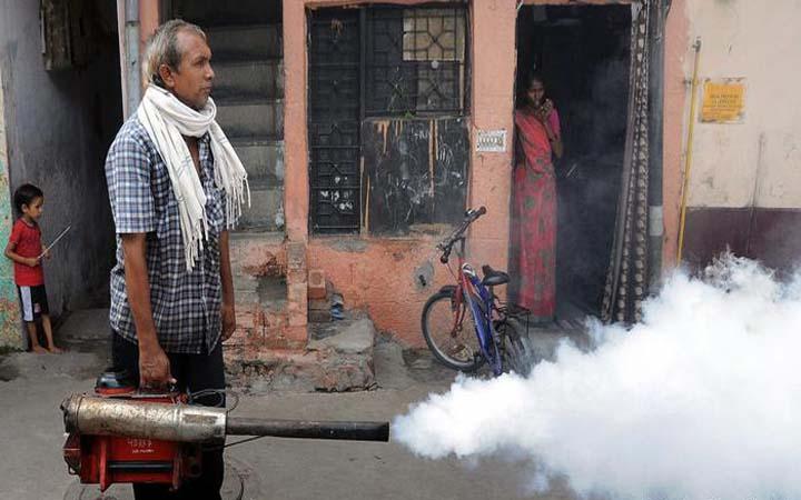 ভারত : ডেঙ্গুতে ৪৫ শিশুর মৃত্যু উত্তরপ্রদেশে, বন্ধ স্কুল