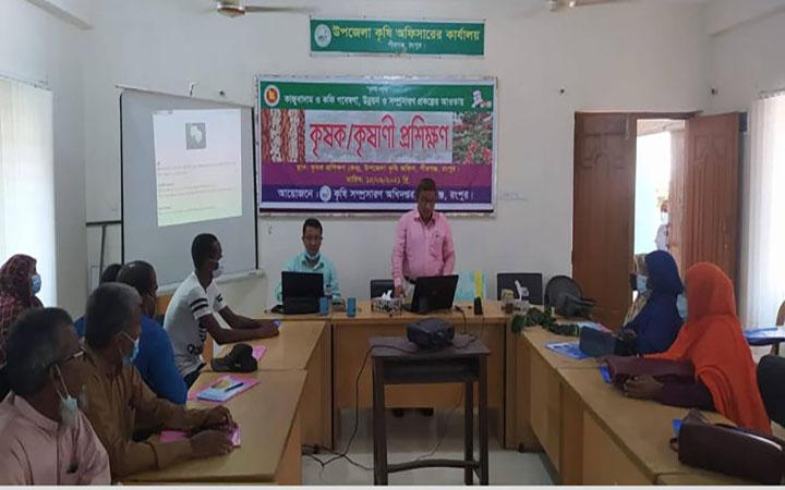 রংপুরের পীরগঞ্জে কফি ও কাজুবাদাম চাষের প্রশিক্ষণ